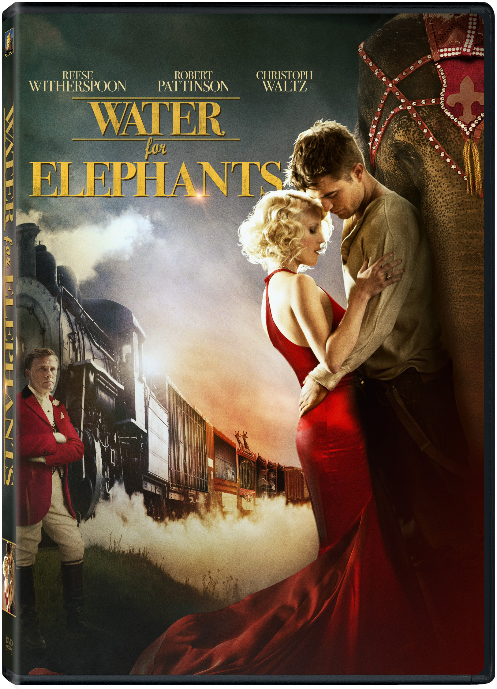 water for elephants a chat sara gruen